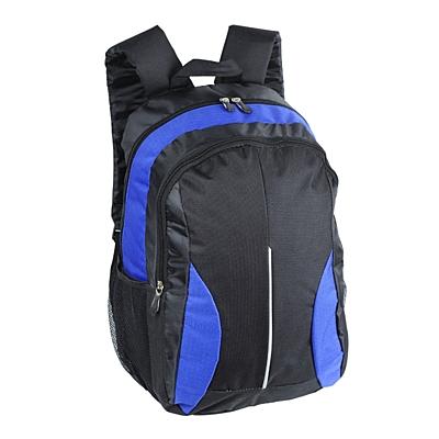 DES MOINES backpack